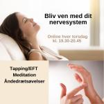 Bliv ven med dit nervesystem-3